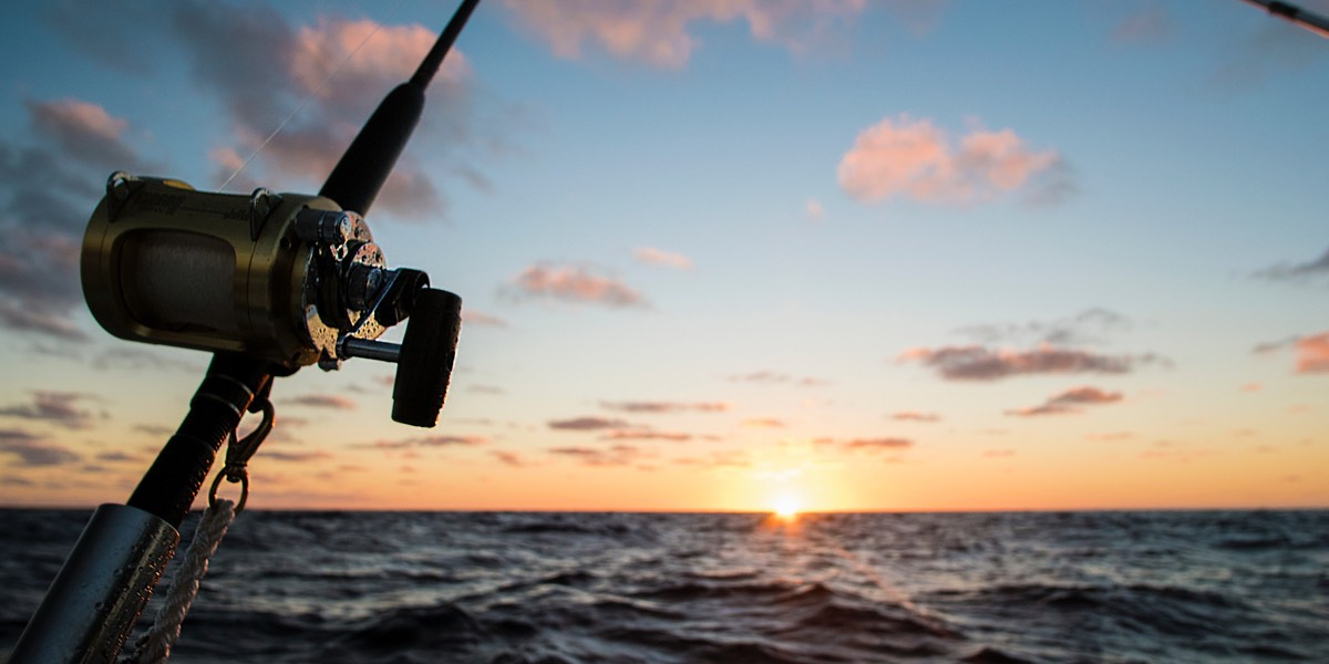 Picture of the sea with a fishing rod in front